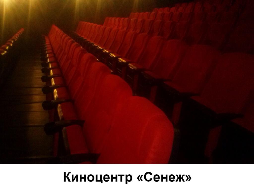 Киноцентр «Сенеж» укомплектован креслами «Орион»